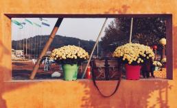2017년 11월 3일 고창군 해리면 책마을 썸네일 사진