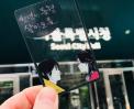 시청답사 | 천년의동행 & 살아 오름  서울답사 썸네일 사진