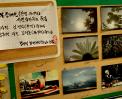 시각장애인 ( 전맹 &저시력 ) 사진작가님들의 작품 썸네일 사진