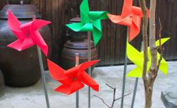 기념 식수 대추나무 썸네일 사진