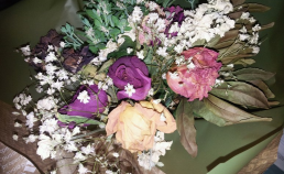 말린꽃 그러나 사랑은 시들지 않는다 썸네일 사진