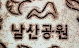 남산 썸네일 사진