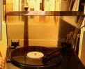 소중한날의 꿈  OST 의  LP 음반의 태스트 판 도착 썸네일 사진